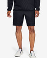 Under Armour /MOVE Shorts
